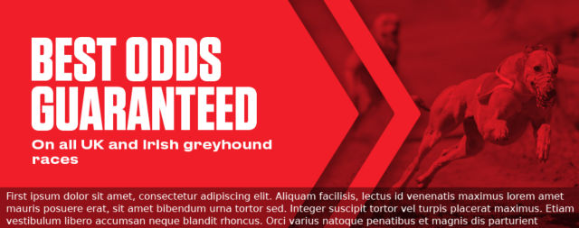 Greyhounds Best Odds Guaranteed